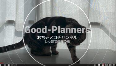 ☆おちゃヌコチャンネル しっぽで指揮編「グッドプランナーズ」プロモーション動画のサンプル。
